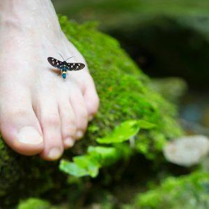 Diyabet ve koruyucu ayak bakımı